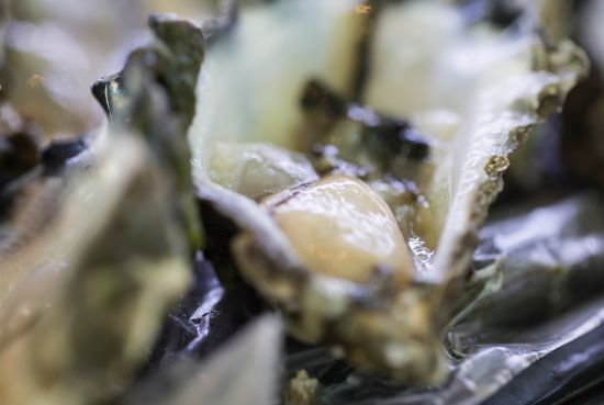 Terraces Restaurant Fresh Oysters